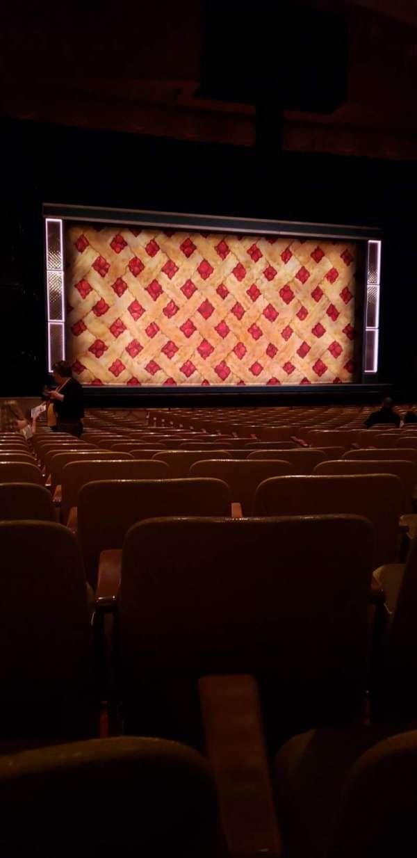 Fisher Theatre, secção: Mnlt, fila: V, lugar: 9
